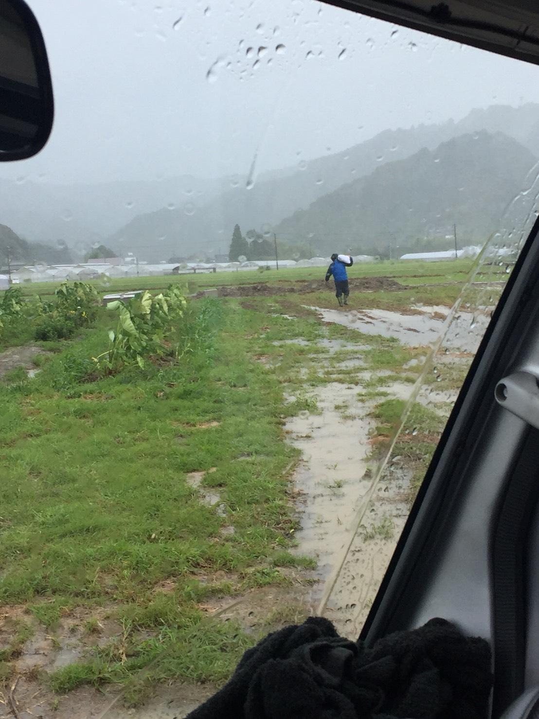 台風の中…