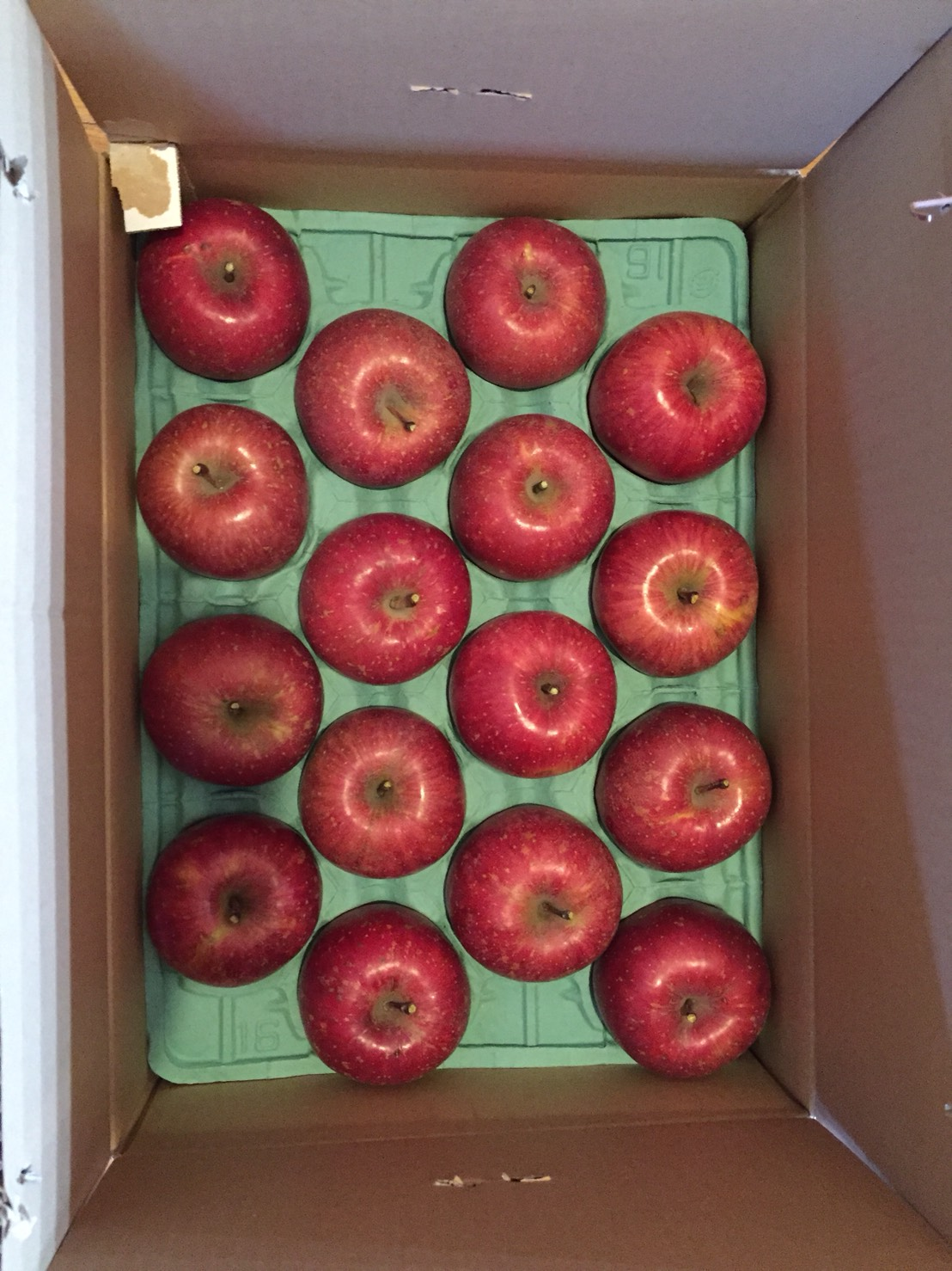 お客様からいただいたリンゴ