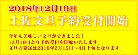 2018年12月19日 土佐文旦予約受付開始 今年も美味しい文旦ができました!12月19日より予約受付を開始いたします。文旦の発送は2019年2月中旬~4月中旬となります。